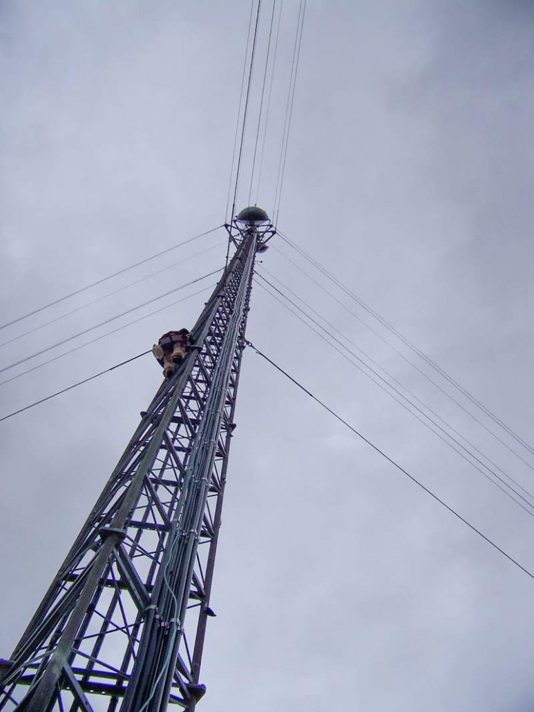 Alamon Wireless Services - Maintenance Services and Emergency Response