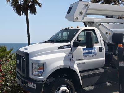 Alamon Wireless Services