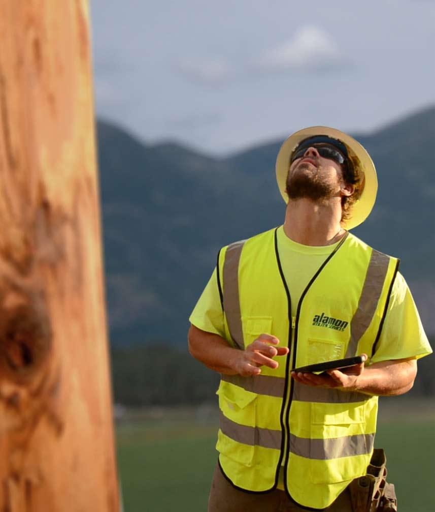 Alamon Utility Pole Loading Analysis
